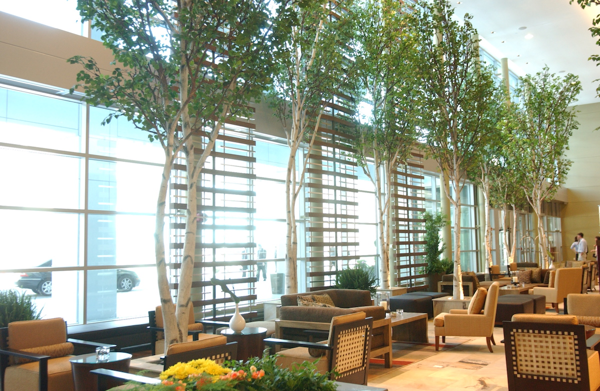 Birch archives page 2 of 2 naturemaker steel art trees Artificial trees for interior design