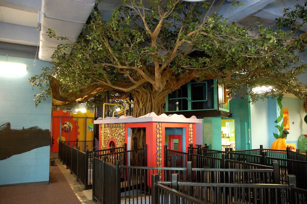 Banyan Tree The Building For Kids Children S Museum