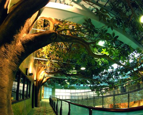 Trees-Tree-Nature-Maker-Naturemaker-Art-Artificial-Fake-Custom-design-unique-best-kapok-indoor-university-large