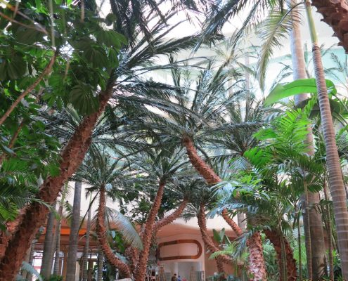 Trees-Tree-Nature-Maker-Naturemaker-Art-Artificial-Fake-Custom-design-unique-resort-palm-macau-resort-casino