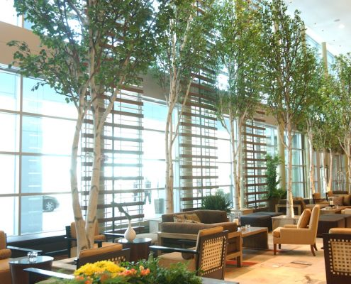 Trees-Tree-Nature-Maker-Naturemaker-Art-Artificial-Fake-Custom-design-unique-best-birch-hotel-westin-commercial