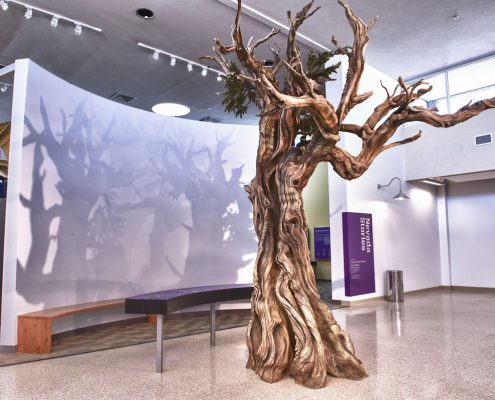 Trees-Tree-Nature-Maker-Naturemaker-Art-Artificial-Fake-Custom-design-unique-best-nevada-bristlecone-pine-museum