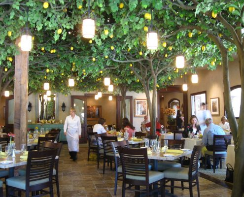 Trees-Tree-Nature-Maker-Naturemaker-Art-Artificial-Fake-Custom-design-unique-best-commercial-lemon-restaurant-Large