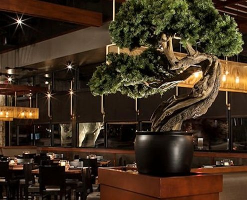 Trees-Tree-Nature-Maker-Naturemaker-Art-Artificial-Fake-Custom-design-unique-best-commercial-pine-bonsai-restaurant