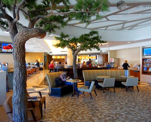Trees-Tree-Nature-Maker-Naturemaker-Art-Artificial-Fake-Custom-design-unique-monterey-pine-san-fransisco-airport