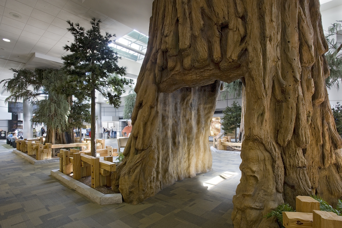 Sequoia Tree Walk Through Fresno International Airport