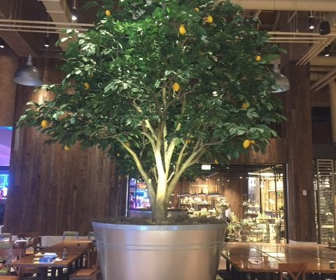 Trees-Tree-Nature-Maker-Naturemaker-Art-Artificial-Fake-Custom-design-sculpture-lemon-resort-casino-commercial-seneca