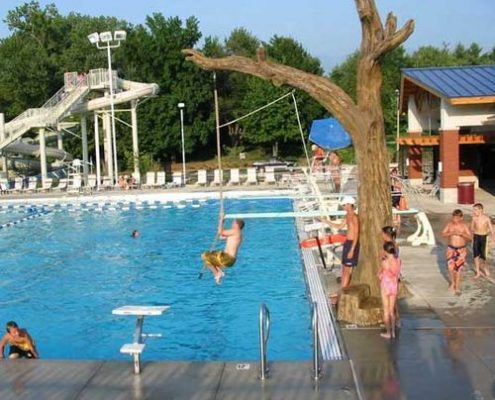 oak tree swing at pool